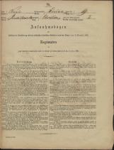 Popis prebivalstva 31. 12. 1869<br />Občina Prečna<br />Bršljin 19<br />Population census 31 December 1869<br />Municipality Prečna