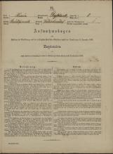 Popis prebivalstva 31. 12. 1869<br />Občina Velika Loka<br />Belšinja vas 8<br />Population census 31 December 1869<br />Municipality Velika Loka