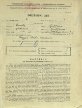 Popis prebivalstva 31. 3. 1931<br />Ljubljana<br />Šelenburgova ulica 7<br />Aleksandrova cesta 1<br />Population census 31 March 1931