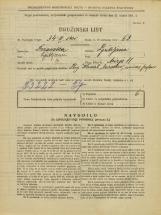 Popis prebivalstva 31. 3. 1931<br />Ljubljana<br />Mirje 11<br />Population census 31 March 1931