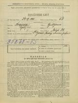 Popis prebivalstva 31. 3. 1931<br />Ljubljana<br />Mirje 21<br />Population census 31 March 1931