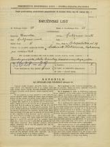 Popis prebivalstva 31. 3. 1931<br />Ljubljana<br />Pokopališka cesta 19<br />Population census 31 March 1931