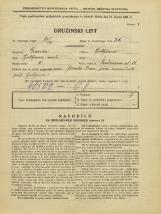 Popis prebivalstva 31. 3. 1931<br />Ljubljana<br />Prešernova ulica 11<br />Population census 31 March 1931