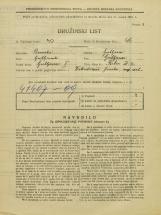 Popis prebivalstva 31. 3. 1931<br />Ljubljana<br />Reber 9<br />Population census 31 March 1931