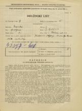 Popis prebivalstva 31. 3. 1931<br />Ljubljana<br />Rožna ulica 21<br />Population census 31 March 1931