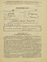 Popis prebivalstva 31. 3. 1931<br />Ljubljana<br />Sredina 11<br />Population census 31 March 1931