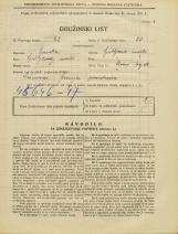 Popis prebivalstva 31. 3. 1931<br />Ljubljana<br />Stari trg 16<br />Population census 31 March 1931
