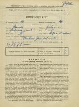 Popis prebivalstva 31. 3. 1931<br />Ljubljana<br />Škofja ulica 10<br />Population census 31 March 1931