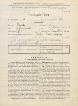Popis prebivalstva 31. 3. 1931<br />Ljubljana<br />Verstovškova ulica 11<br />Population census 31 March 1931