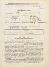 Popis prebivalstva 31. 3. 1931<br />Ljubljana<br />Kino Tivoli NN3<br />Population census 31 March 1931