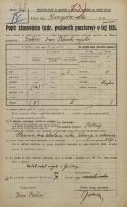Popis prebivalstva 20. 12. 1921<br />Ljubljana<br />Dunajska cesta NN1<br />Population census 20 December 1921