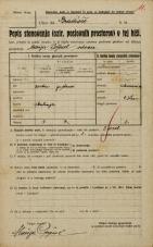 Popis prebivalstva 20. 12. 1921<br />Ljubljana<br />Gradišče NN3<br />Population census 20 December 1921