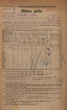 Popis prebivalstva 20. 12. 1921<br />Ljubljana<br />Ilirska ulica 19<br />Population census 20 December 1921