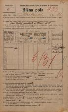 Popis prebivalstva 20. 12. 1921<br />Ljubljana<br />Ilirska ulica 31<br />Population census 20 December 1921