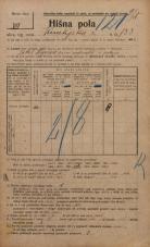 Popis prebivalstva 20. 12. 1921<br />Ljubljana<br />Kmetijska ulica 133<br />Population census 20 December 1921