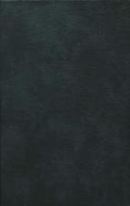 Gradivo za zgodovino Slovencev v srednjem veku<br />Četrta knjiga<br />1101-1200